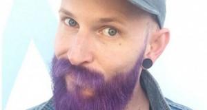 barbe-violette-L