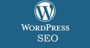 Wordpress-SEO-Training-Swansea